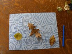 Leaves on Pond pictures. Art/Science tie in: basic shapes and abstract art with nature study and week 10 science new grammar.