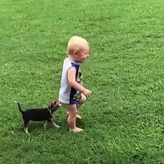 Funny Pets - Funny Baby - Pets are so funny The post Funny Pets appeared first on Gag Dad. Funny Dog Faces, Cute Funny Animals, Cute Baby Animals, Funny Babies, Funny Cute, Funny Dogs, Cute Cats, Animals For Kids, Animals And Pets