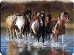 """Horses in Water Cutting Board . $11.50. For any Horse Lover! These counter top savers are made of tempered glass which is virtually unbreakable. Resists stains, heat, bacteria and odors - and is dishwasher safe Extra large 12"""" x 16"""" cutting surface. Scratch resistant, safety tempered glass. More sanitary than plastic or wood. Heat resistant - will not melt, burn or scorch with even the hottest pans."""