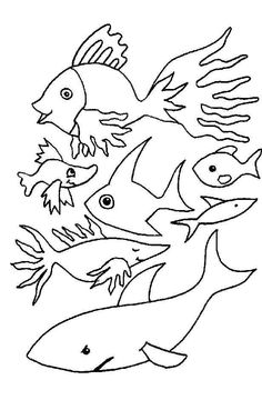 These Are Our Some Collections About Fish Coloring Pages Print Out And Color Several Pictures Of Pag