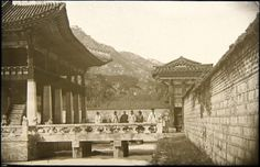 """""""The lotus pond in the palace of the summer."""" [Gyeongbuk-gong]. Percival Lowell photo ca. 1882."""