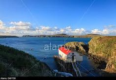 Image result for ramsey island pembrokeshire World Information, Lunar New, Island, Beach, Water, Image, Life, Outdoor, Gripe Water