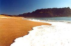 Hot Water Beach, Whitianga, North Island, NZ.
