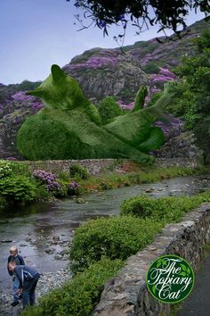 From The Topiary Cat series by artist Richard Saunders. (These are photographic images, not real topiaries!)