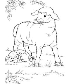 Farm animal coloring page | Mother sheep with her little lamb