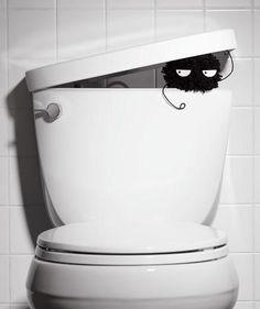 How Gross Is the Bathroom? | Go nuts on lurking germs with these bacteria-targeting tricks that work.