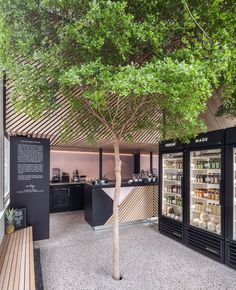 A large tree grows through the centre of this Amsterdam cold pressed juice shop, which local practice Standard Studio designed to reflect the city's hidden green spaces