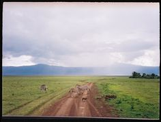 tanzania-travel-photography-BLOG-59