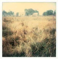 Polaroid by Andrei Tarkovsky Lot 21 - Polaroid 2