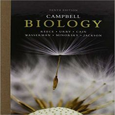 Download complete test bank for general organic and biological test bank for campbell biology 10th edition by reece urry cain wasserman minorsky jackson fandeluxe Images