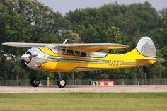 cessna 195   Cessna 195, 195, businessliner, cessna, takeoff, yellow