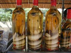 Interesting and Amazing World. Did you know Snake wine is an alcoholic beverage produced by infusing whole snakes in rice wine or grain alcohol. The drink was first recorded to have been consumed in China during the Western Zhou dynasty and considered an important curative and believed to reinvigorate a person according to Traditional Chinese medicine. It can be found in China, Vietnam and throughout Southeast Asia.