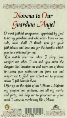 Novena to Our Guardian Angel Prayer Card.oh how I often forget this constant friend of mine. < I have heard we all have 2 guardian angels apiece. Catholic Religion, Catholic Quotes, Religious Quotes, Catholic Prayers Daily, Spiritual Prayers, Catholic Churches, Novena Prayers, Angel Prayers, Faith Prayer