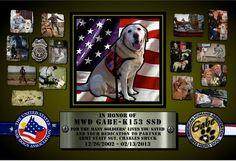 Ellie the Pit Bull shared Vote Gabe 2012 Hero Dog's Photo