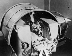 Rosetta: Del 'Sputnik' al 'Philae', los grandes éxitos de la exploración espacial | Ciencia | EL PAÍS