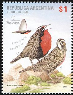 Long-tailed Meadowlark stamps - mainly images - gallery format