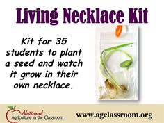 Fun activity to add to your next lesson on plants, seed or food.  Follow link to purchase kit and/or find free lesson plans!