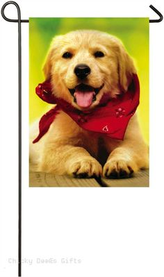 Evergreen Garden flag Dog with Bandana Golden Retriever 14a4164