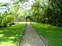 The ideal place to visit when in Port Moresby Experience Life, Secondary School, Papua New Guinea, Ecology, Botanical Gardens, Conservation, Tourism, Places To Visit, Sidewalk