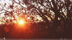 Relax Music | Niklas Gustavsson - Sunrise In Sacramento 1