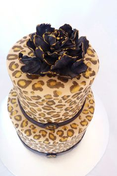 Handpainted Cheetah print cake - Top view of handpainted Cheetah print cake.