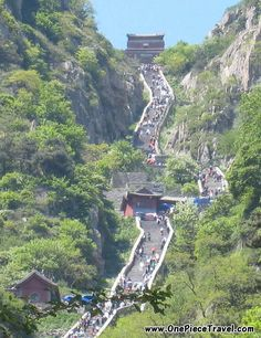 Dont forget to stop and drink the amazing tea on the way up!!!  Mount Tai 泰山, Shandong province 山东省, China
