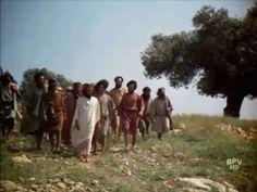 """FRATERNIDADE     O Caminho:  Quando Jesus esteve na Terra, disse um dia: """" Qua..."""