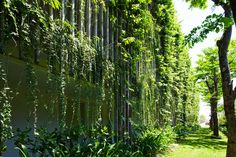 Vo Trong Nghia's new Babylon Hotel in Vietnam is wrapped in lush tropical plants and vines.