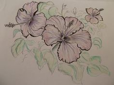 I also love hibiscus flowers. So much. #Drawing #Art #Mine #colour.