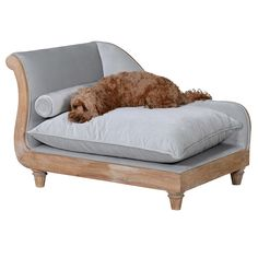 Beautiful grey velvet chaise with bolster cushion, perfect for your pampered pooch reduced from Luxury Pet Beds, Cosy Home, Bolster Cushions, Contemporary Style Homes, Animal Decor, Home Furnishings, Dog Lovers, Shabby Chic, Couch