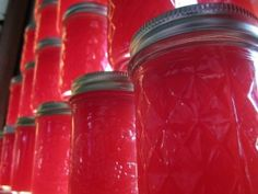 How to harvest and make Agarita Jelly