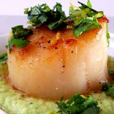 Seared Sea Scallops with Cilantro Gremolata and Pea Purée...absolutely beautiful and delicious. perfect summer fare. Be sure that the pea puree is room temp or it will cool the scallops too quickly after you plate