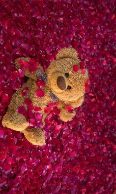 Teddy Bear Party, Cute Teddy Bears, Cute Panda Wallpaper, Bear Wallpaper, Dont Touch My Phone Wallpapers, Cute Wallpapers, Flower Phone Wallpaper, Iphone Wallpaper, Happy Teddy Day Images