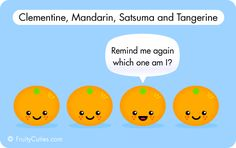 clementine mandarin satsuma tangerine cartoon - when you all look the same it's what's inside that counts!