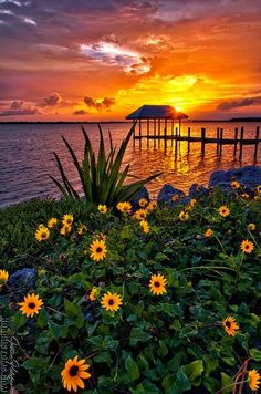 Sunset over Hutchinson Island www.facebook.com/loveswish