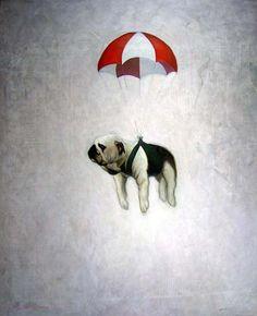Skydiving pooch. LOVE THIS!!!!!