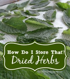 How do I store that? Dried herbs - Lay herbs on drying screens    PreparednessMama