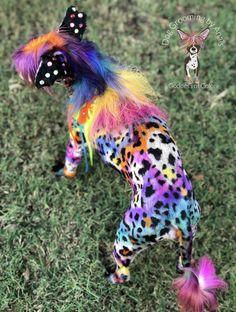 Lisa Frank, Dog Grooming, Giraffe, Dinosaur Stuffed Animal, Dogs, Horses, Animals, Motivation, Color
