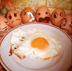 """Humpty Dumpty's Funeral"" - Moral of the Story: do not sit on a wall if you are an egg :p  #Food #Eggs #Protein #FriedEgg #FlowerEgg #SunnySideUp #Funny #NurseryRhymes #HumptyDumpty #Humor #Classic #LOL #CeoFGL"