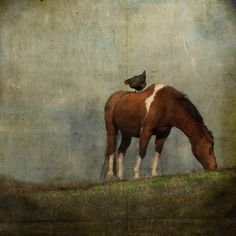 A Little to the Left and Up a Bit Photopainting by Jamie Heiden