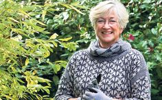Our green-fingered guru solves your garden problems. This week:  pruning hebes   and getting rid of leatherjackets