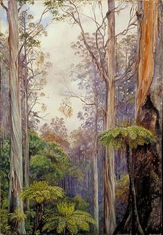 Gum Trees and Tree Ferns, Victoria, Australia,   Marianne North
