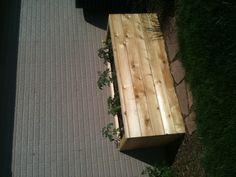 Self watering planter box, love!!
