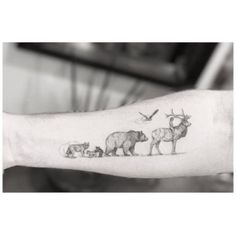 This animal procession is like something out of a much-loved story book. Tattoo by @_dr_woo_