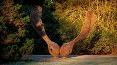 Giant sycamore seed sculpture