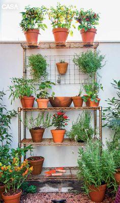 Detalhe da horta, com o cultivo de ervas aromáticas e plantas frutíferas.