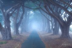 Photo Sleepy Hollow by Lijah Hanley on 500px