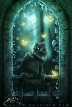 Black cat at night - art I Love Cats, Crazy Cats, Cool Cats, Animal Gato, Magic Cat, Image Chat, Witch Cat, Warrior Cats, Halloween Cat