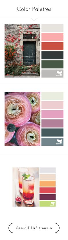 """""""Color Palettes"""" by susy-v ❤ liked on Polyvore featuring design seeds, backgrounds, colors, flowers, pictures, filler, color palettes, seeds, fillers and palette"""