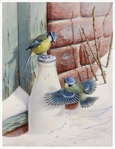 Raymond Cyril Watson.Только птички.... Обсуждение на LiveInternet - Российский Сервис Онлайн-Дневников